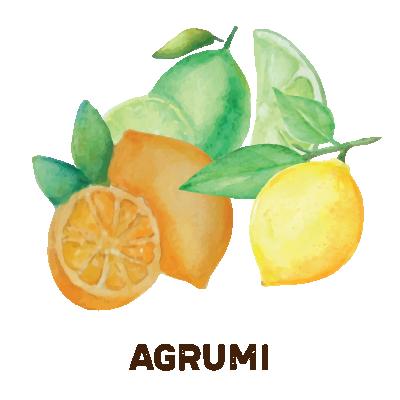 agrumi