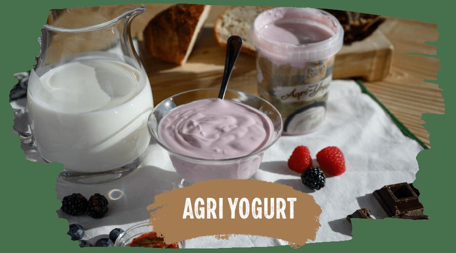 agri_yogurt